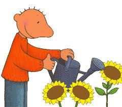 Afbeeldingsresultaat Voor Zonnebloem Kleurplaat Thema Planten