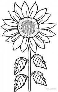 Sunflower Coloring Pages Zonnebloem Tekening Zonnebloem