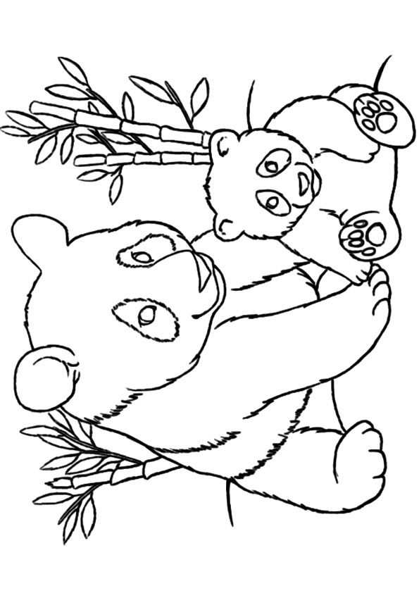Top 25 Panda Bear Coloring Pages For Your Little Ones Met