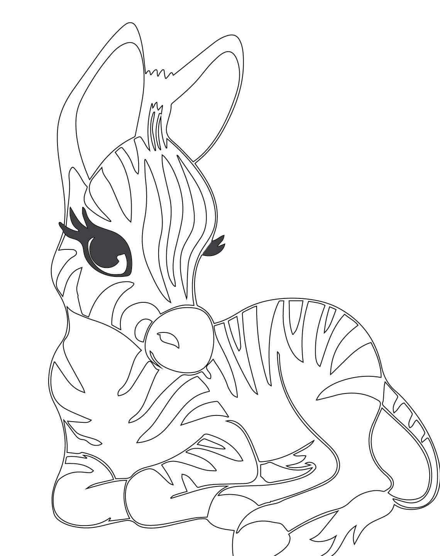 baby zebra kleurplaat