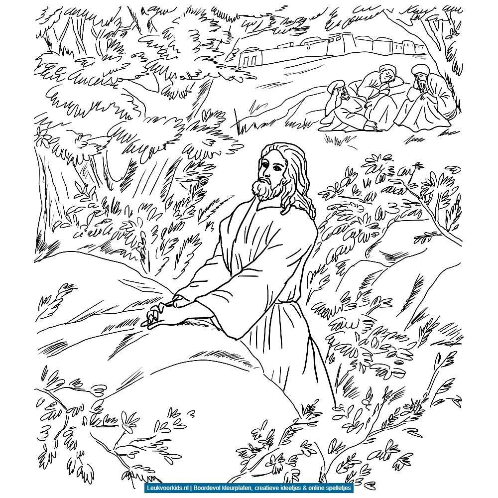 Bijbelverhalen Kleurplaten Gratis Kleurplaten Bijbel