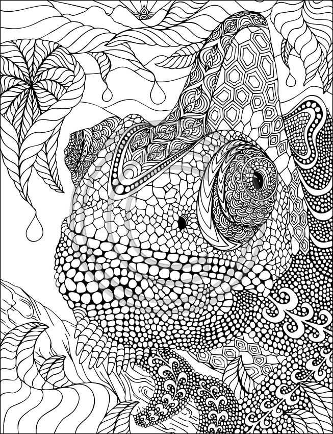 Phil Lewis Art Coloring Books For Adults I M Not A Big Fan Of