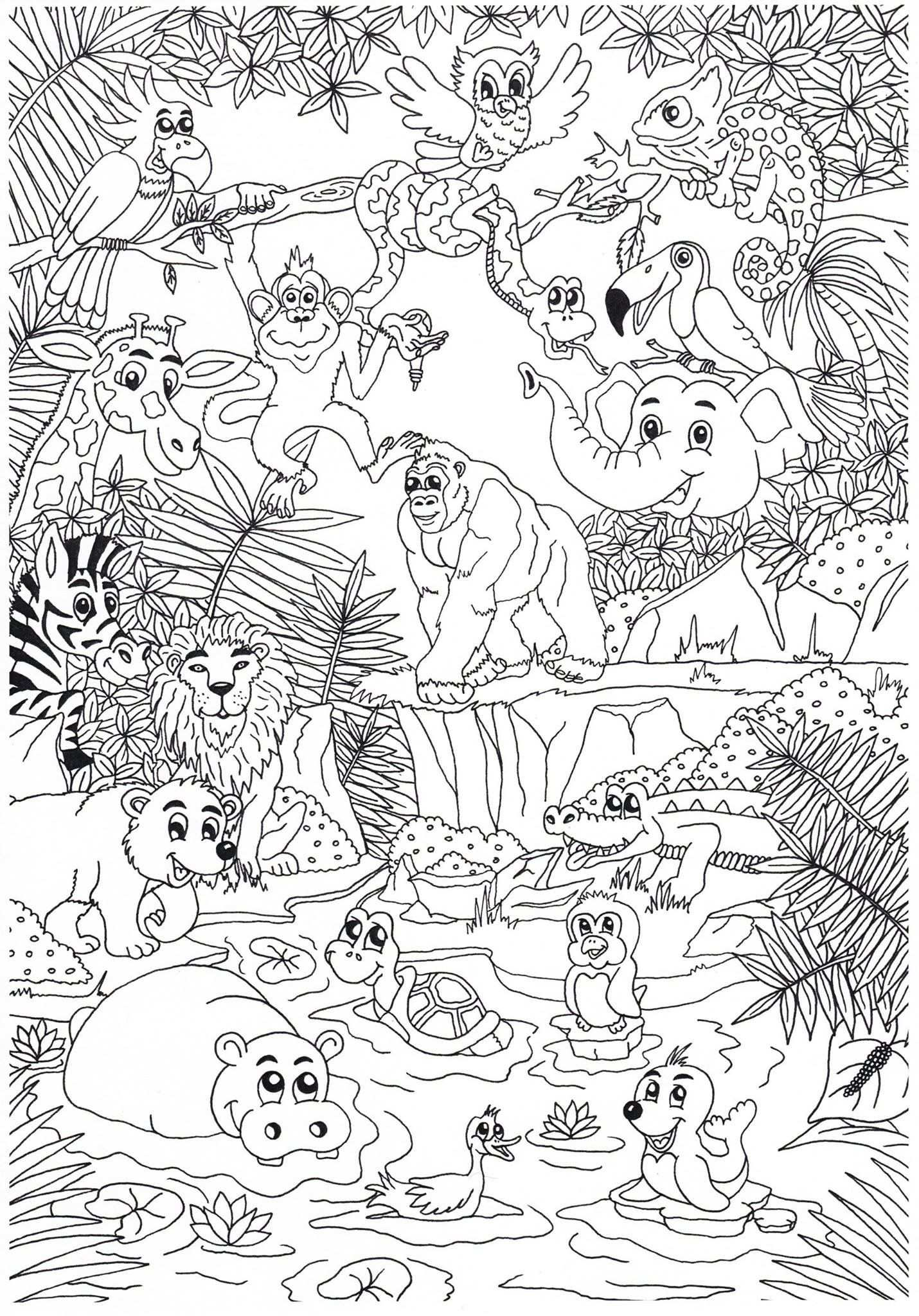 Coloring Page With Images Zoo Coloring Pages Jungle Coloring