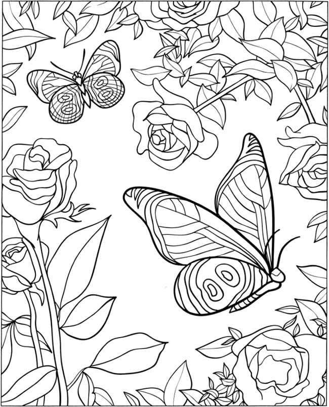 Coloring For Adults Kleuren Voor Volwassenen Kleurplaten