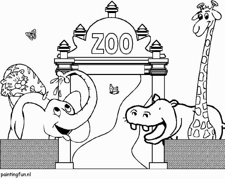Coloring Pages Zoo Animals Awesome Dierentuin Kleurplaat De