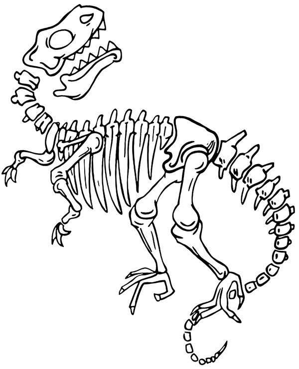 Bones Coloring Dinosaur Pages Printable 2020 With Images