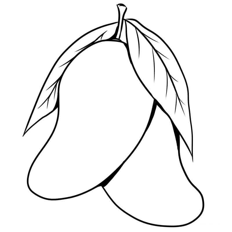 Mango Coloring Pages In 2020 With Images Fruit Coloring Pages