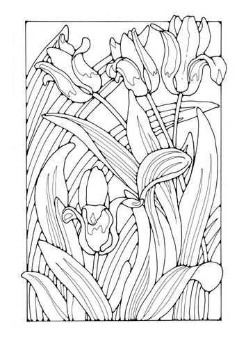 Kleurplaat Tulpen Kleurplaten Gratis Kleurplaten Bloem Kleurplaten