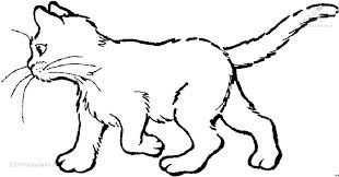 Afbeeldingsresultaat Voor Kleurplaat Poes Katten Tekening