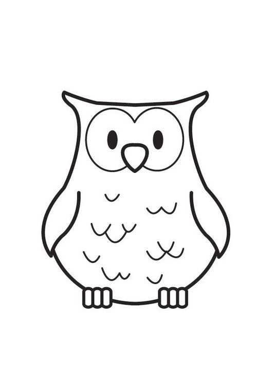 Kleurplaat Uil Education Owl Coloring Pages Halloween Owl