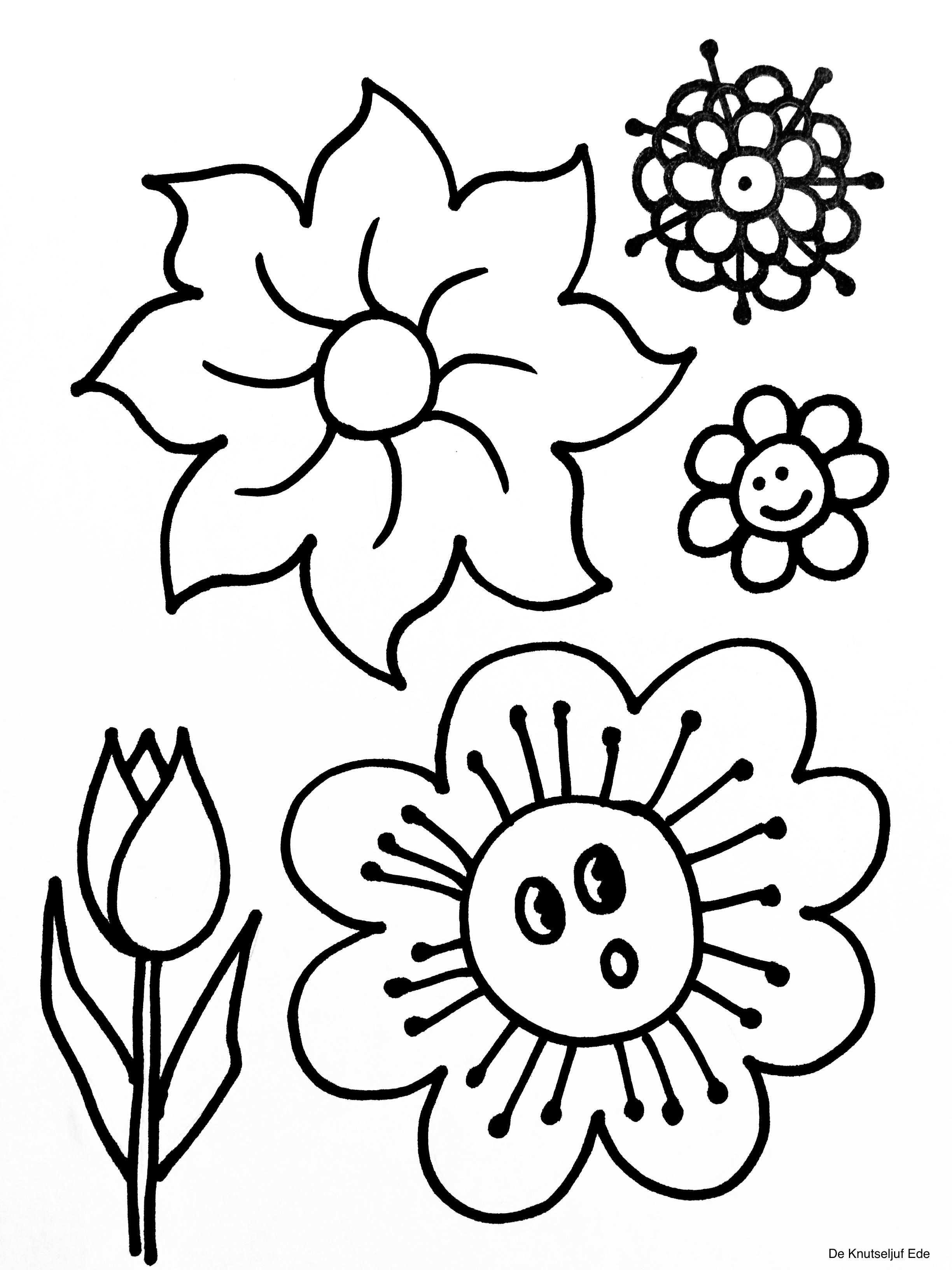 Kleurplaten Bloemen Met Afbeeldingen Kleurplaten Bloem