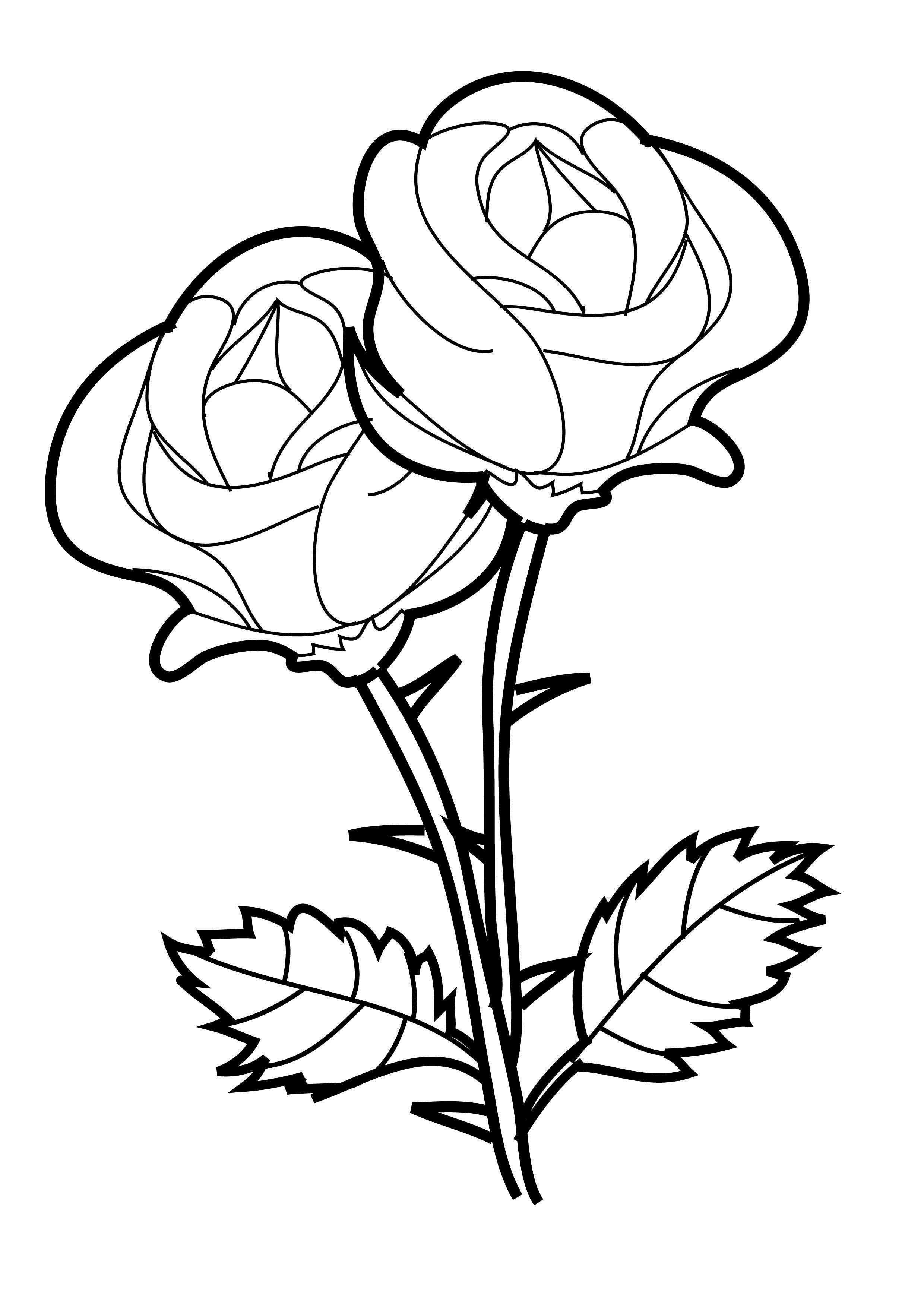 Rose Two Flowers Coloring Page Kleurplaten Rose Bloemen