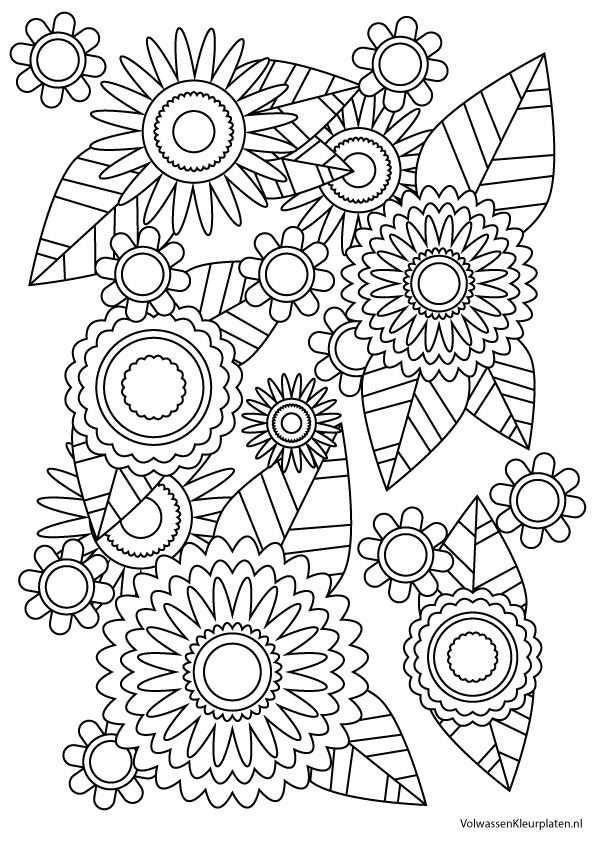 Volwassen Kleurplaat Bloem 2 Volwassen Kleurplaten Met