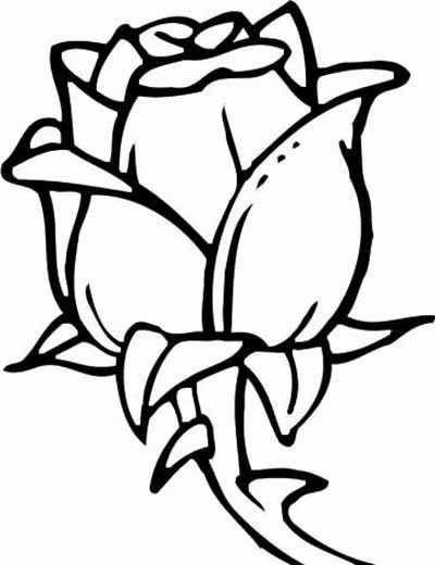 Pin Van Oma Pluis Op Tekenigen Bloemen Tekenen Kleurplaten En
