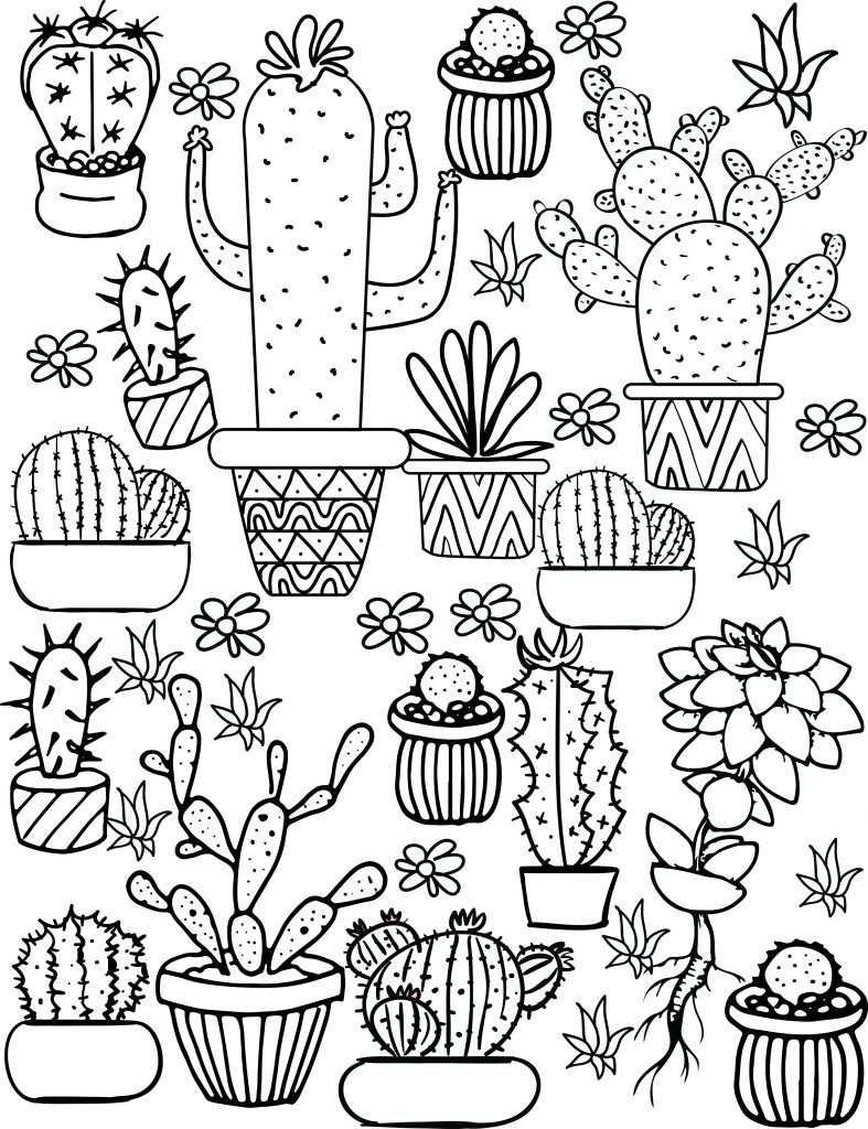 Cute Coloring Pages Cactus Tekening Kleurplaten Leer Tekenen