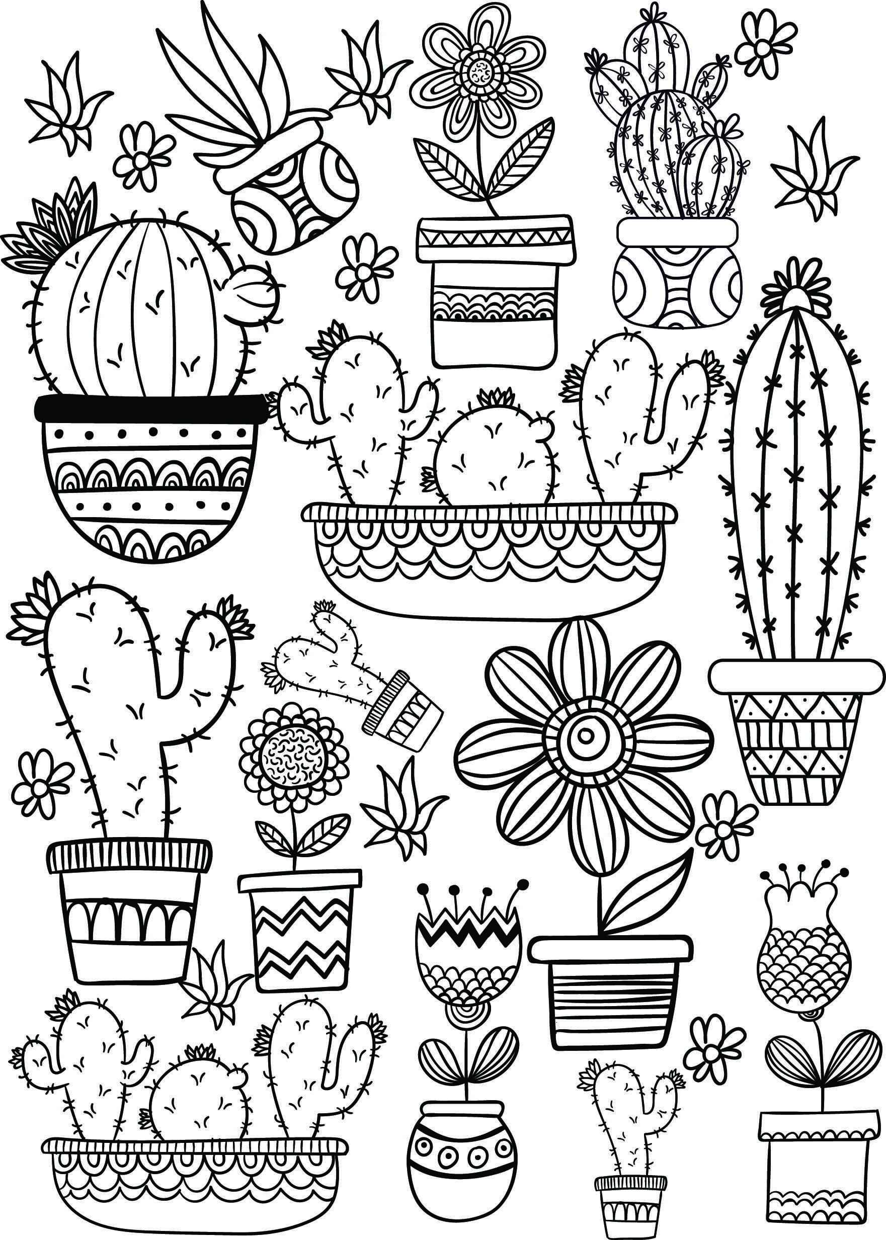 Cactus And Succulent Printable Adult Coloring Pages With Images