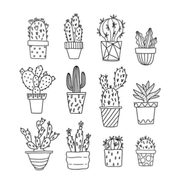 Cactus Illustration Tumblr Buscar Con Google Cactus Dibujos