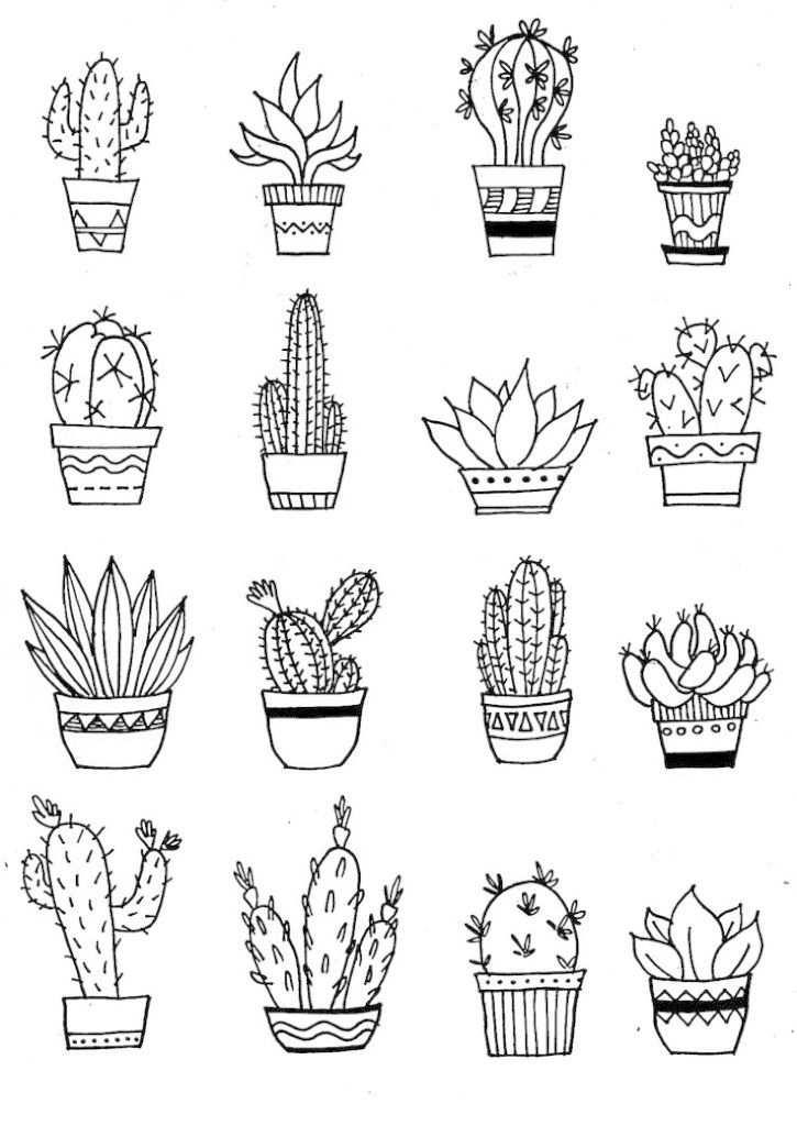 Cactus Illustration Cactus Tekening Bloemen Tekenen En Kleurplaten