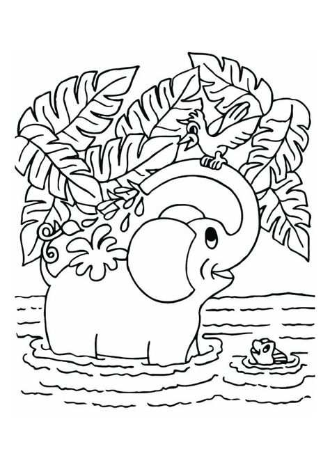 Kleurplaat Dieren Kleurplaten Kleurplaten En Olifanten