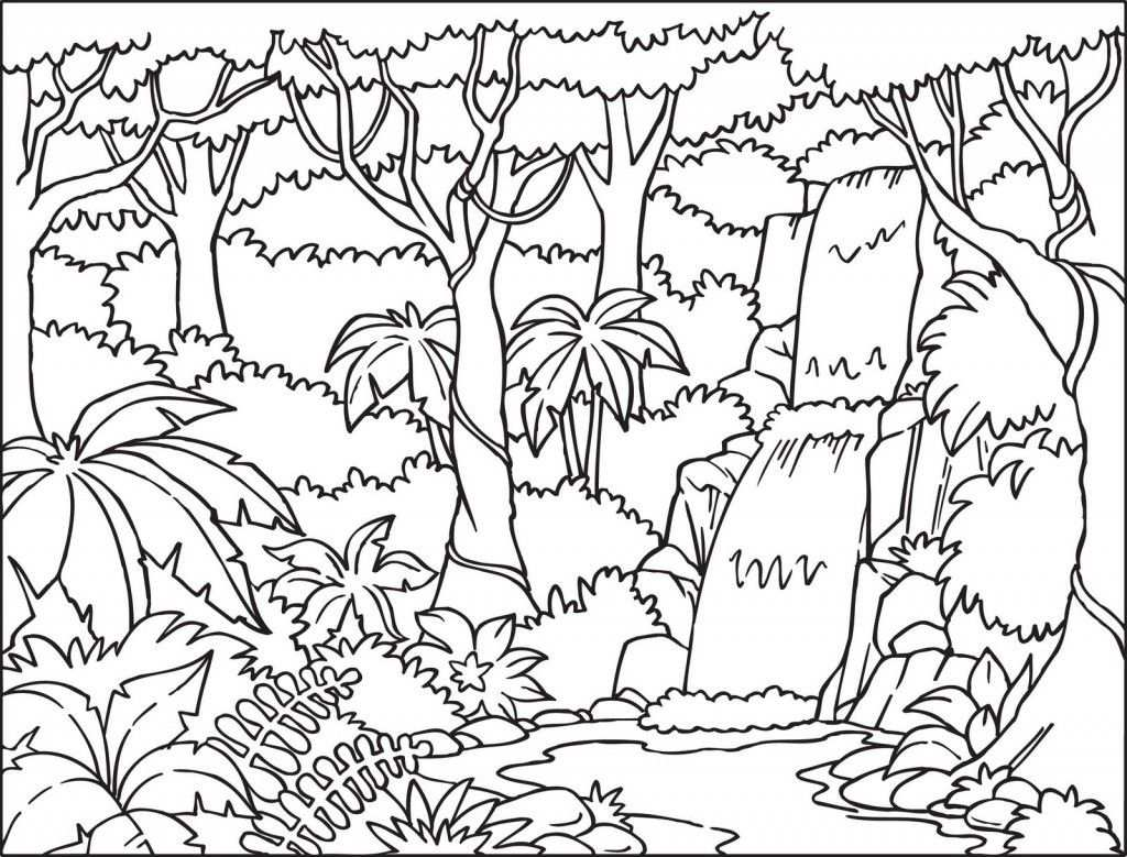 Tropical Rainforest Coloring Pages Color Jungle Coloring Book