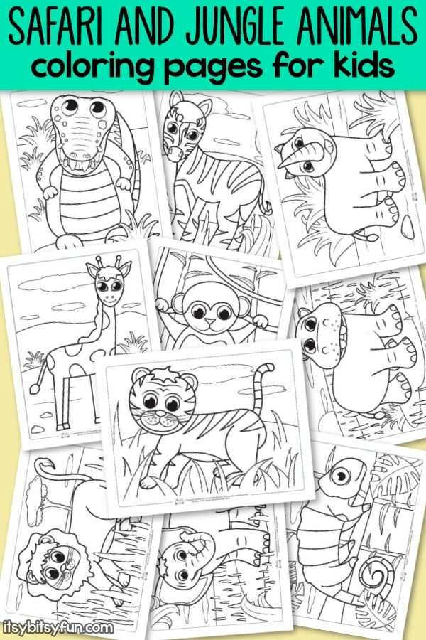 Safari And Jungle Animals Coloring Pages For Kids Kleurplaten