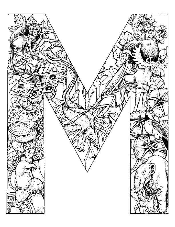 Kleurplaat Alfabet Dieren Letter M Met Afbeeldingen