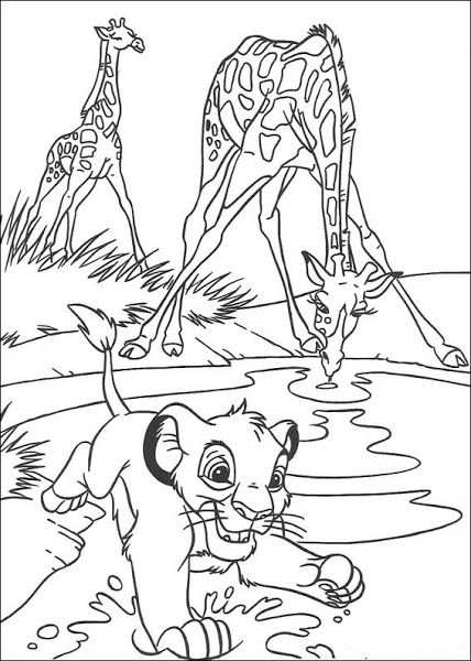 Sea Lion Coloring Pictures Giraffe Coloring Pages Lion Coloring