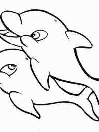 20 Gratis Te Printen Dolfijn Kleurplaten Topkleurplaat Nl In