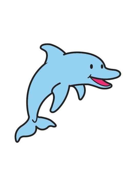 Afbeelding Dolfijn Prent Dolfijn Afbeelding Voor Gebruik Op