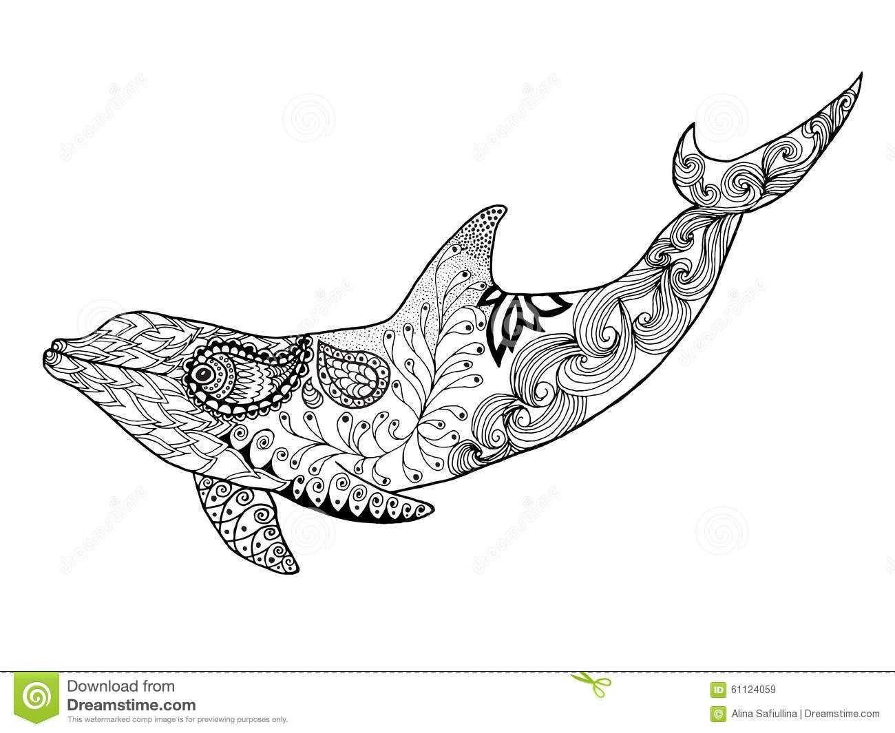Zentangle Dolfijn Google Zoeken Met Afbeeldingen Dolfijnen