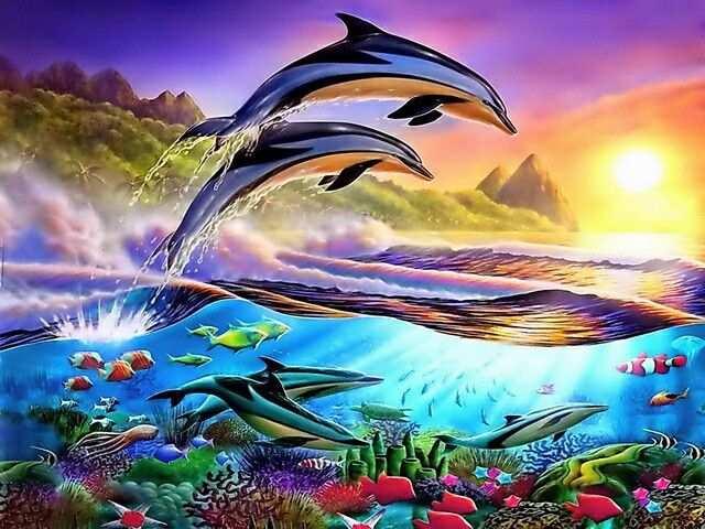 Dolfijn Dolfijnen Draken Tekeningen Fantasie Landschap