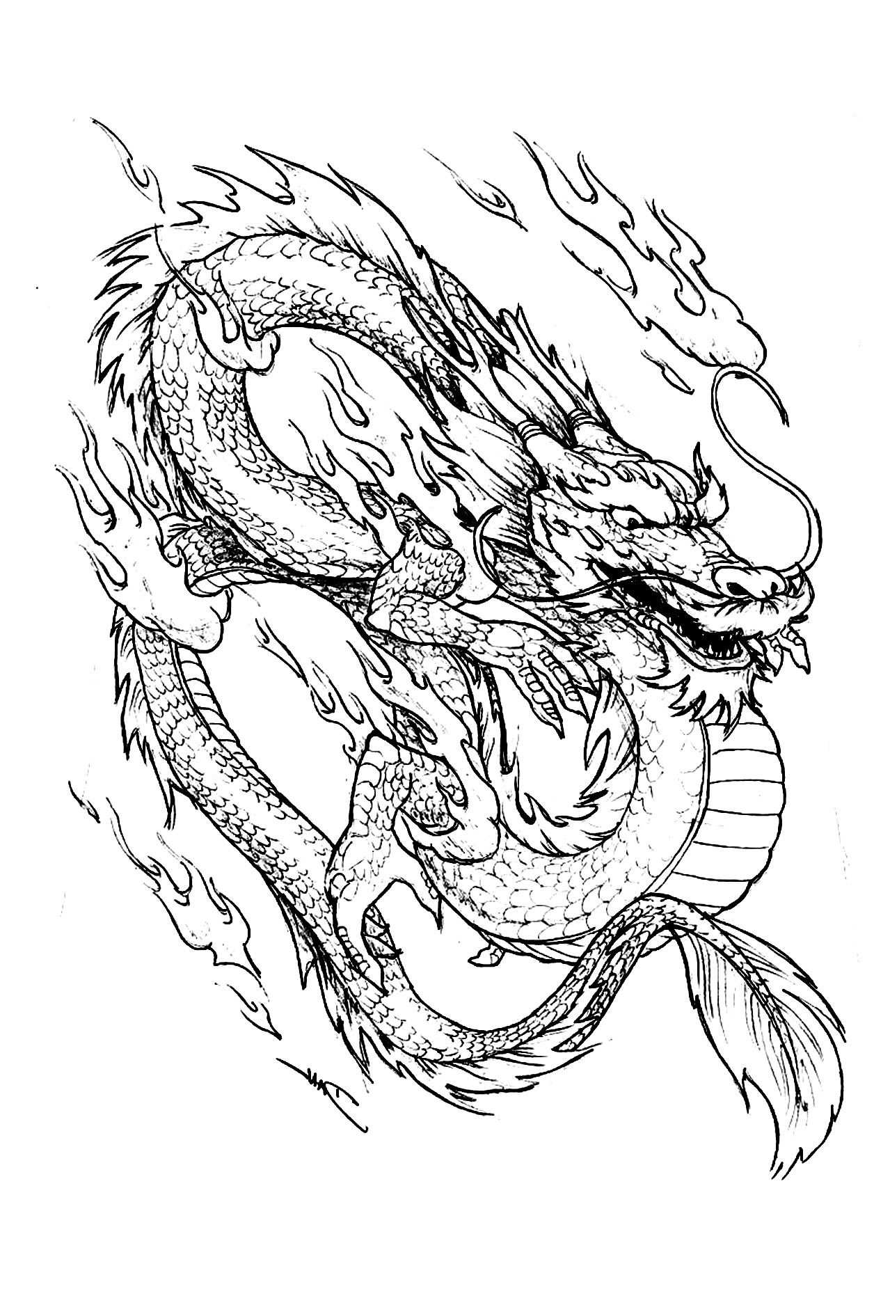 Chinese Dragon China Asia Coloring Pages For Adults Just