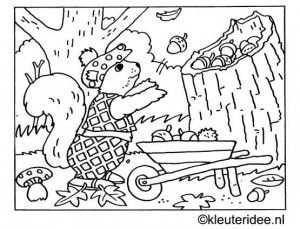 Kleurplaat Herfst Eekhoorn Eikels Kleuteridee Nl Met