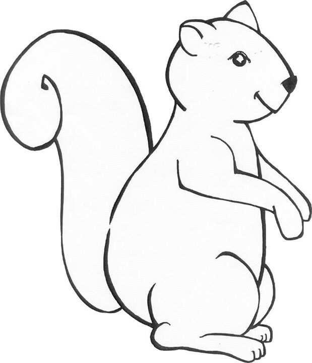 Squirrel Coloring Page Kind Knutselen Kleurplaten Eekhoorn