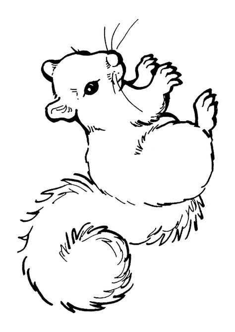 kleurplaat eekhoorntjes