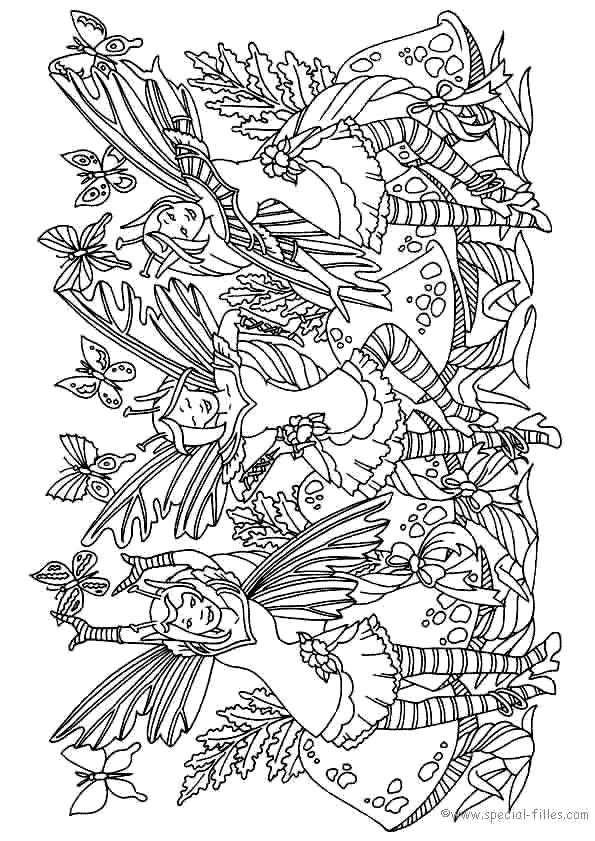 Fee Kleurplaat Fairy Kleurplaten Adult Coloring Pages En Boek