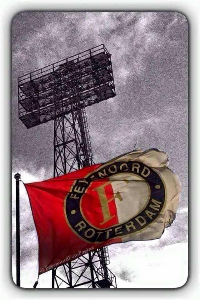 Feyenoord Voetbal Rotterdam Nederland