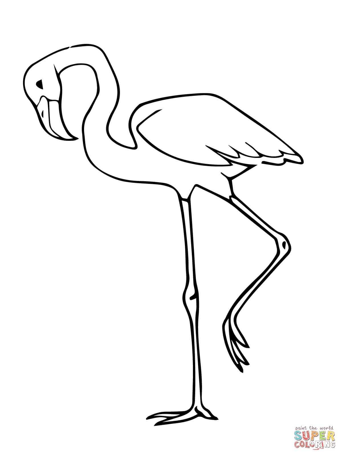 Pink Flamingo Bird Coloring Page Free Printable Coloring Pages