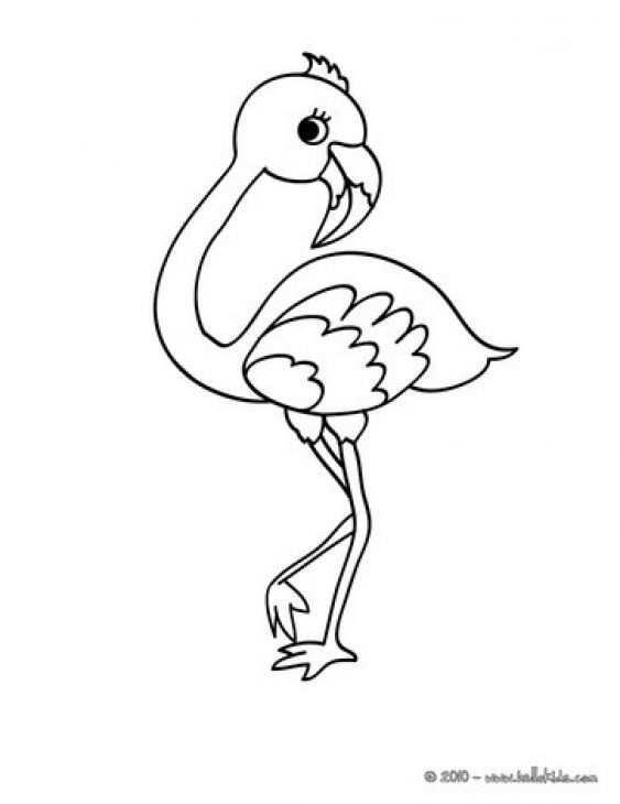 Cute Baby Flamingo Coloring Page For Kids Met Afbeeldingen