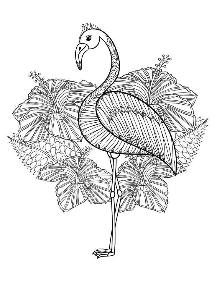 Cute Flamingo Coloring Page For Adults To Print At Home Met