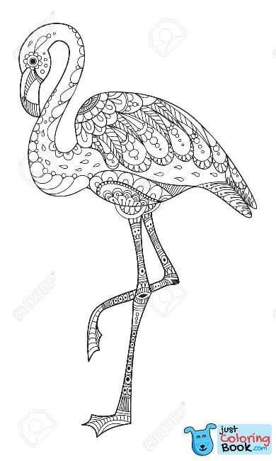 Top Rated Printable Flamingo Head Coloring Pages Flamingo