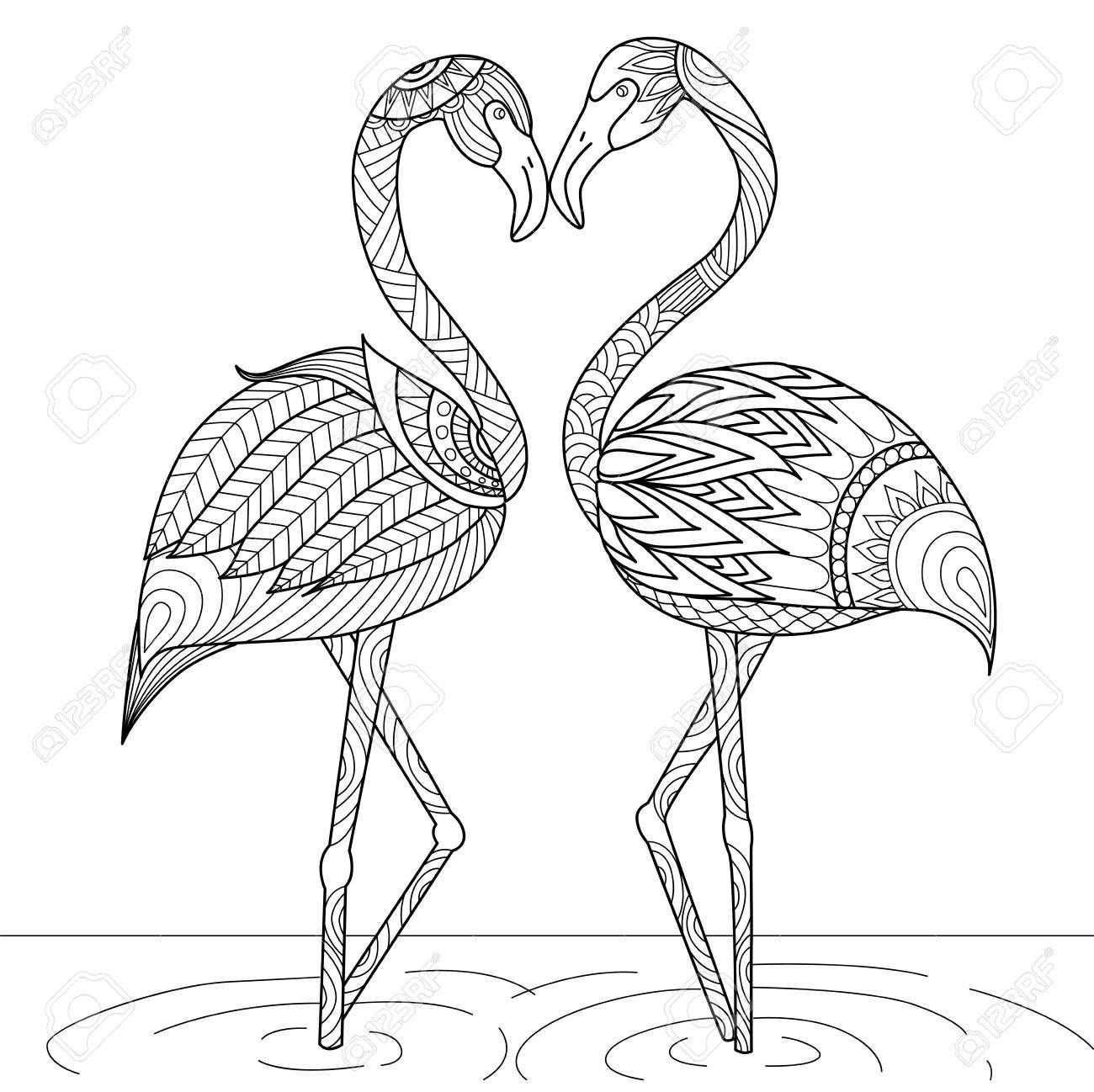Stock Vector Szinezolapok Flamingo Szinezo