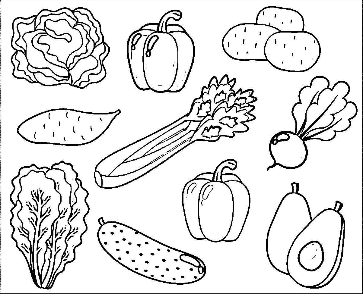 Popular Printable Pictures Of Vegetables Top Gallery Fruit