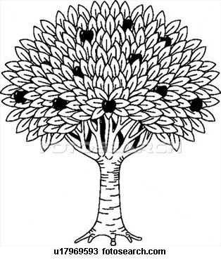 Fruit Boom Clipart Illustratie Illustraties En Fruit