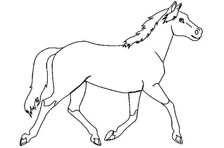 Paard Kleurplaat Google Zoeken Paarden Kleurplaten Sinterklaas