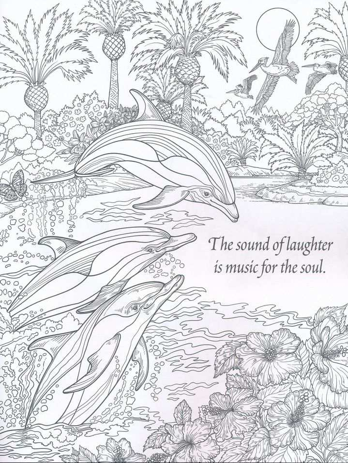 The Sound Of Laughter Nature Coloring Book For Adults Met