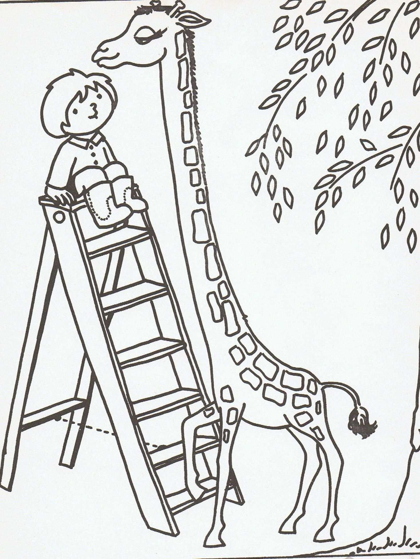 Kleurplaat Dikkertje Dap Giraffe Knutselen Kleurplaten Schmidt