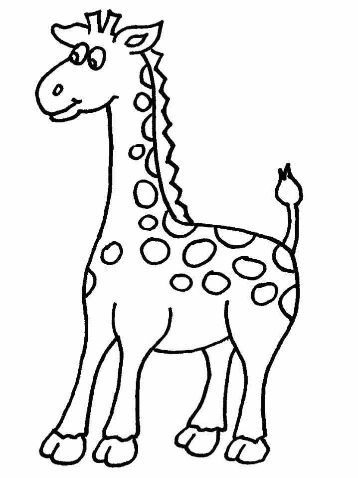 Kleurplaat Giraf Met Afbeeldingen Dieren Kleurplaten