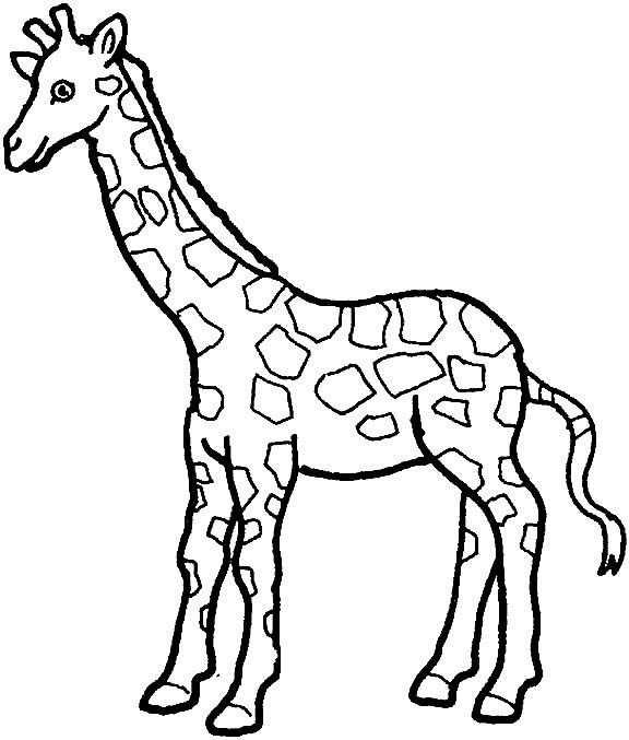 Coloring Page Giraffe Giraffe Malvorlagen Tiere Tiere Zeichnen