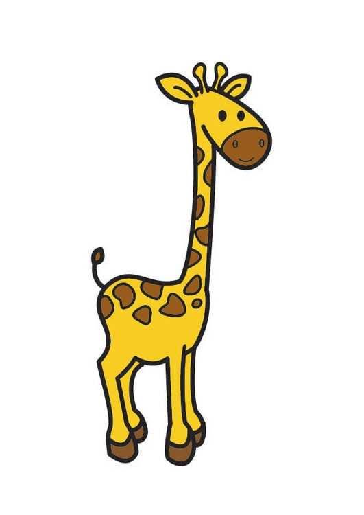 Afbeelding Giraf Giraffe Tekening Olifant Tekening Kleurplaten